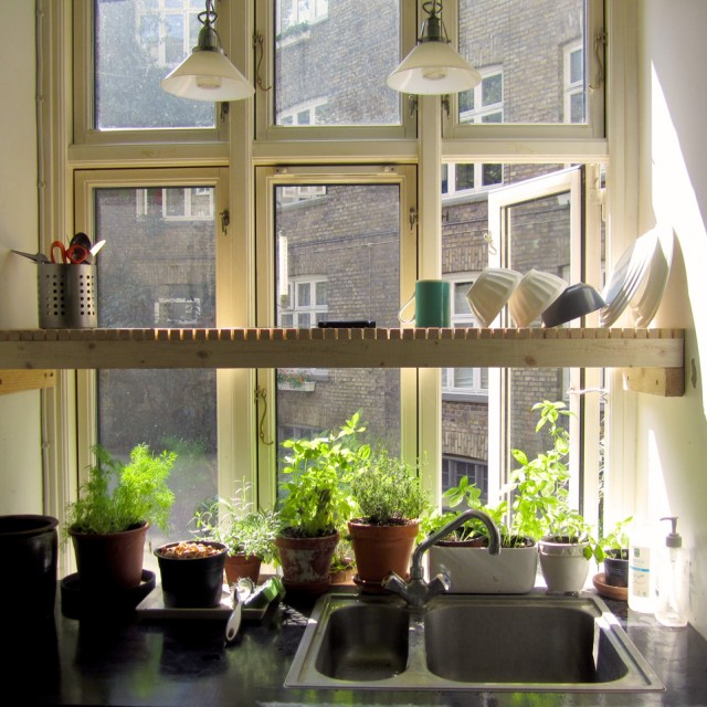 Kitchen Window Herb Planter: Passive Herb Watering