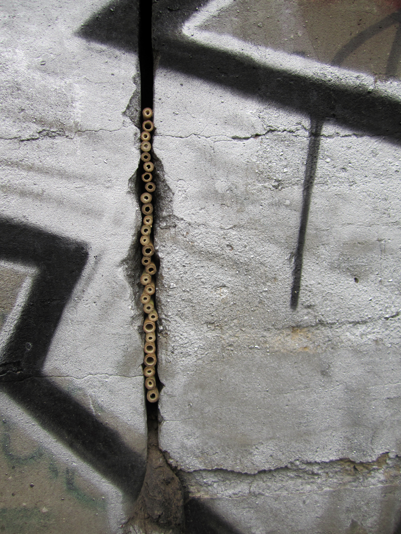 Cracks in the wall.