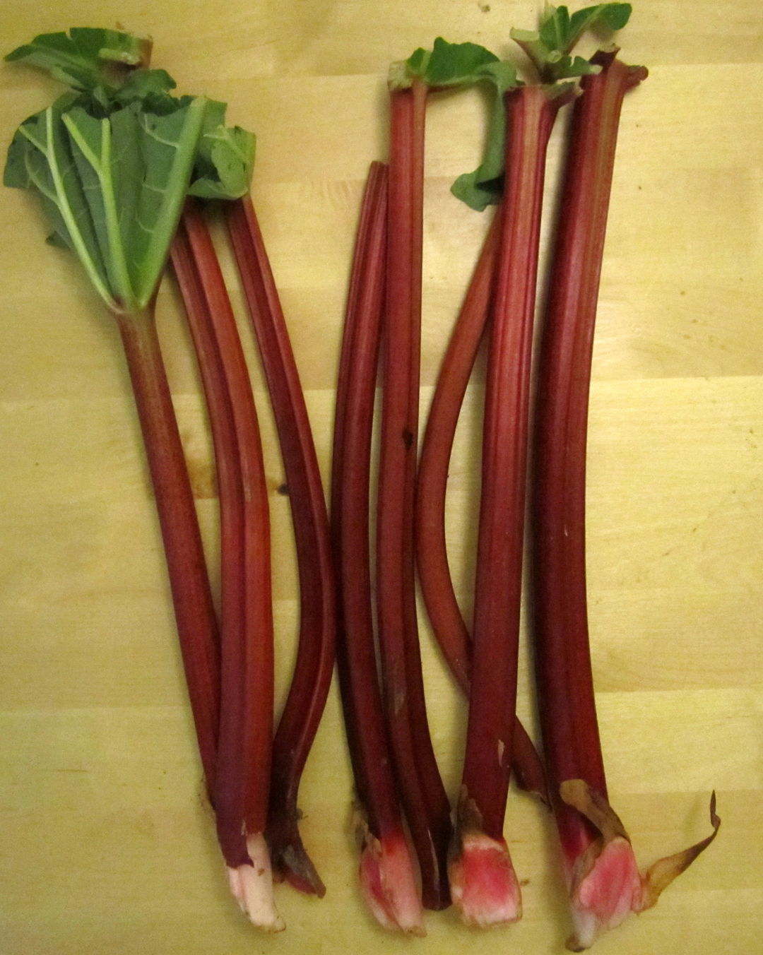 Rhubarb/Rabarber | Mythological Quarter