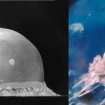 Jellyfish or nuclear explosion?